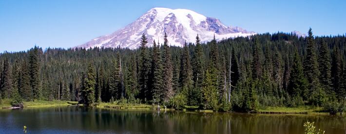 Phlebotomy Training in Washington State | Phlebotomy Training and